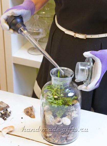 флорариум мастер класс